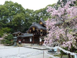001今宮神社本殿2_R.jpeg