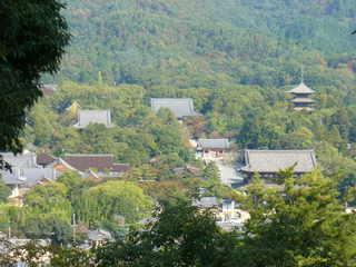 一の丘からの仁和寺全景.jpeg