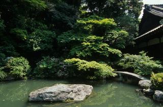 青蓮院 相阿弥の庭.jpeg